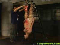 【ひとずま熟女SM動画】ぽっこりお腹の妊婦が緊縛され逆さ吊りの体勢で蝋燭責めされて涙を流すw